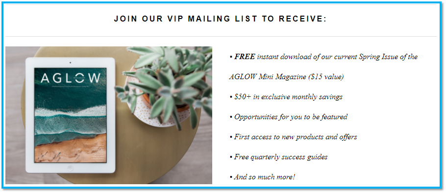 09 - La newsletter VIP